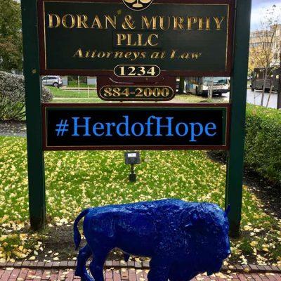 Doran-and-Murphy-web