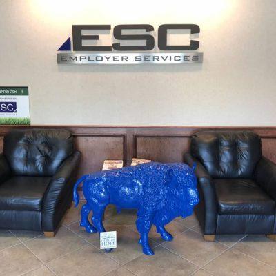 ESC-web
